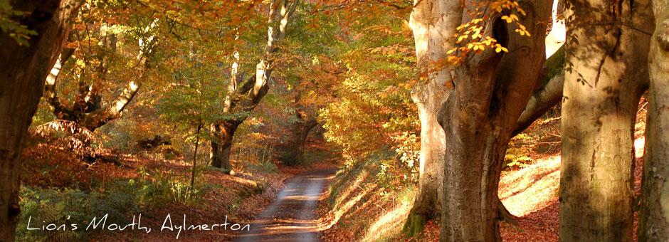 """Lion's Mouth"", Aylmerton, Norfolk"