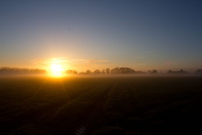 Wickmere sunrise
