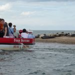Blakeney Seal Trips, Norfolk